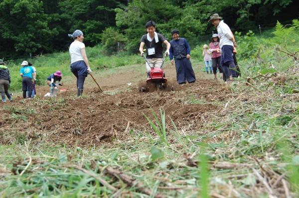 greensmile ゴマ畑を開墾して種まき