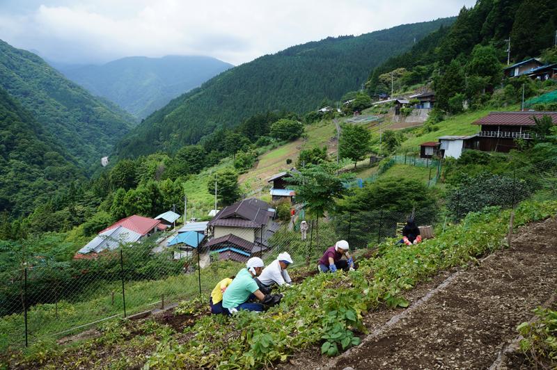 埼玉県 秩父市大滝地域