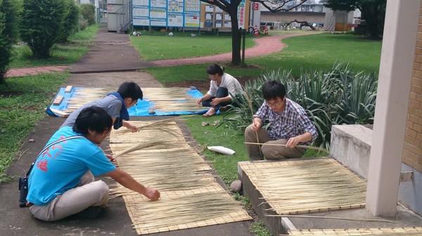 宇都宮大学 鹿沼でほうき草を作る会4