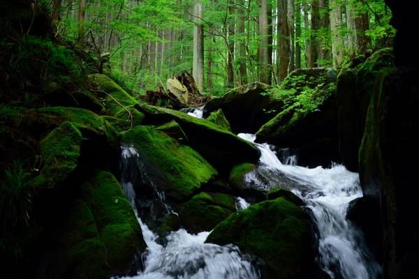 茨城県 常陸太田市 里美 里美の水プロジェクト